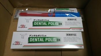 DSC_0205_R.JPG