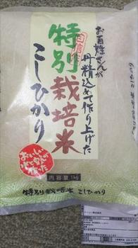 DSC_0796_R.JPG