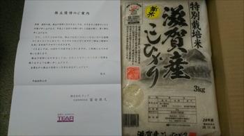 DSC_1530_R.JPG