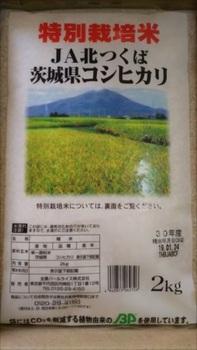 DSC_0060_R.JPG