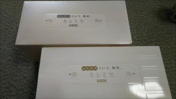 DSC_2135_R.JPG